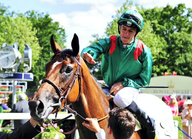 FRENCH PREVIEW: Ervedya has the edge in Rothschild