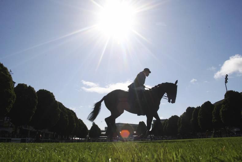 1,500 horses take on the Discover Ireland Dublin Horse Show