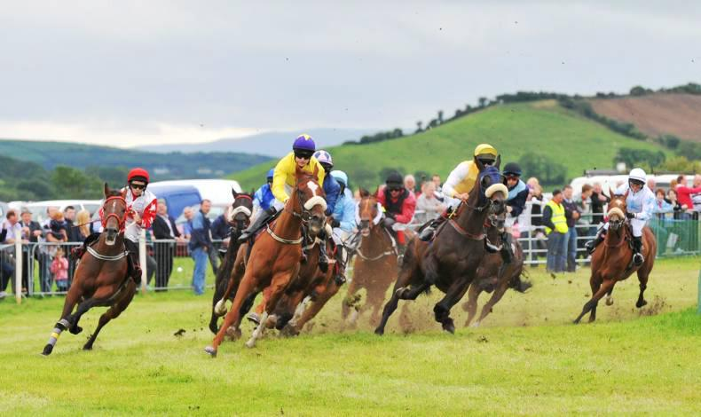 PONY RACING:  Donegal Derby in Taaffe double