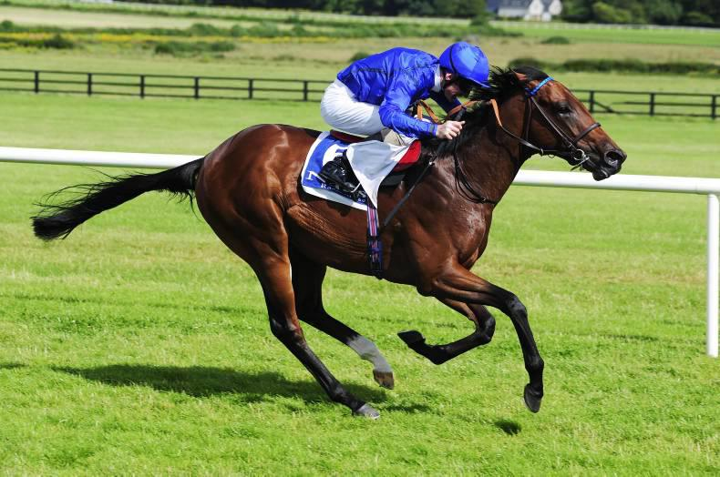 Breeding Insights: Jim Bolger's shrewd investment paying dividends
