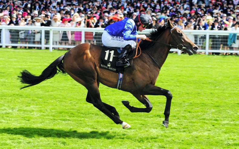 FRENCH PREVIEW: Mighty Muhaarar to star again