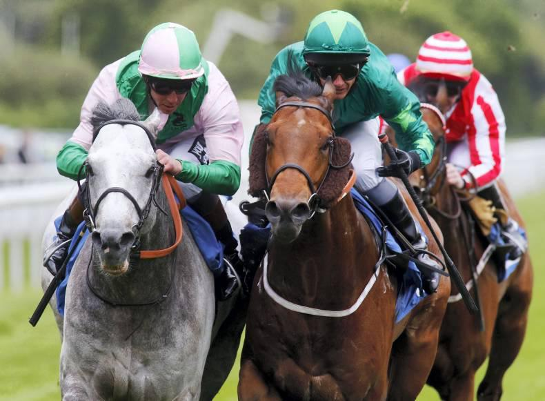 Indesatchel son Mattmu may have Group 1 potential