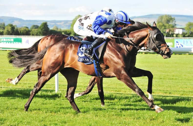 Waipu Cove another smart one for Equiano