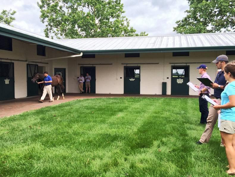 DARLEY FLYING START: Action-packed two weeks in America