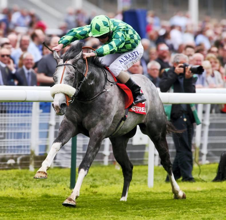 YORK PREVIEW: Gatsby can gallop to International glory