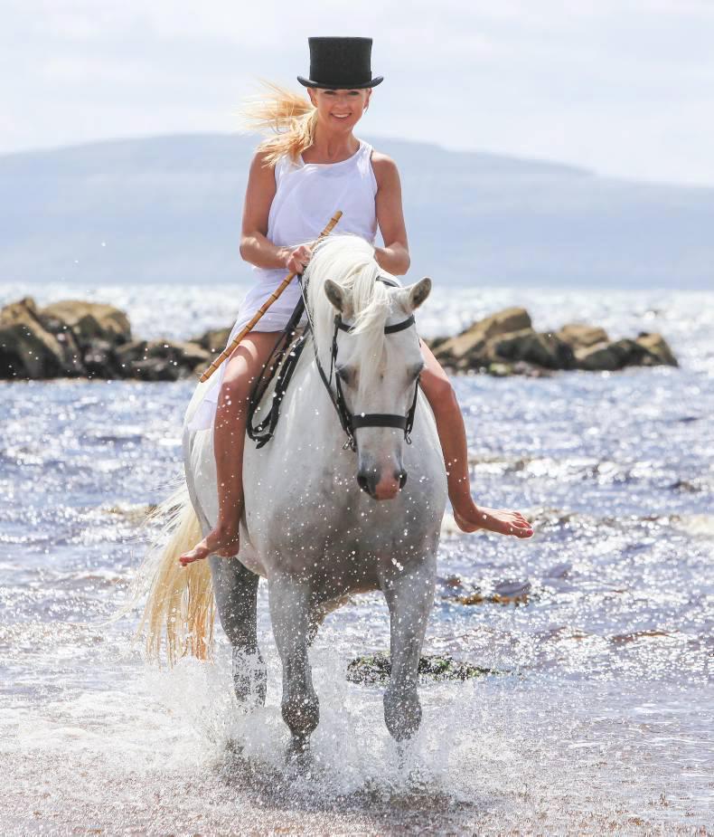 Clifden gears up for Connemara Pony Festival