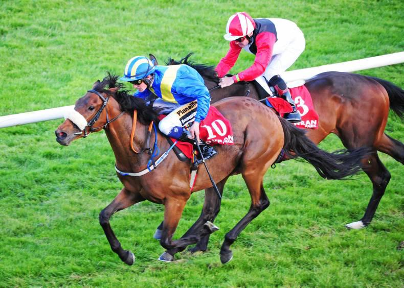 TRAMORE SATURDAY: Brokopondo ripe for another win