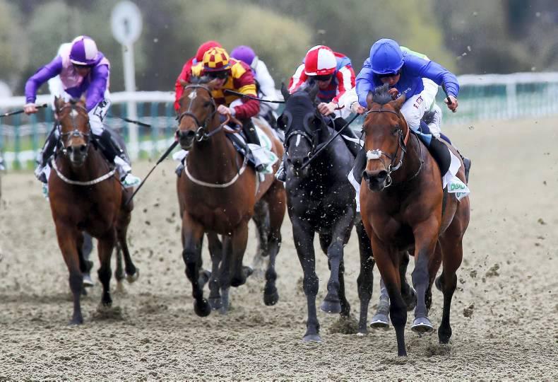 More racing in Britain next year