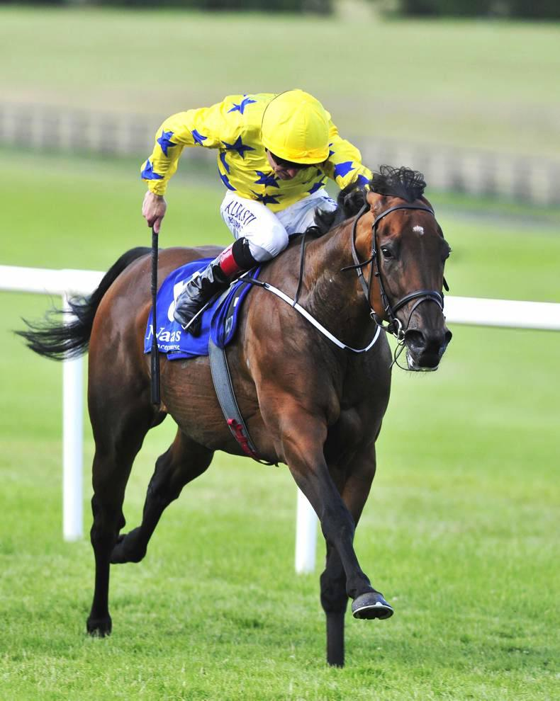 TALKING TRAINERS: Michael O'Callaghan chasing the dream
