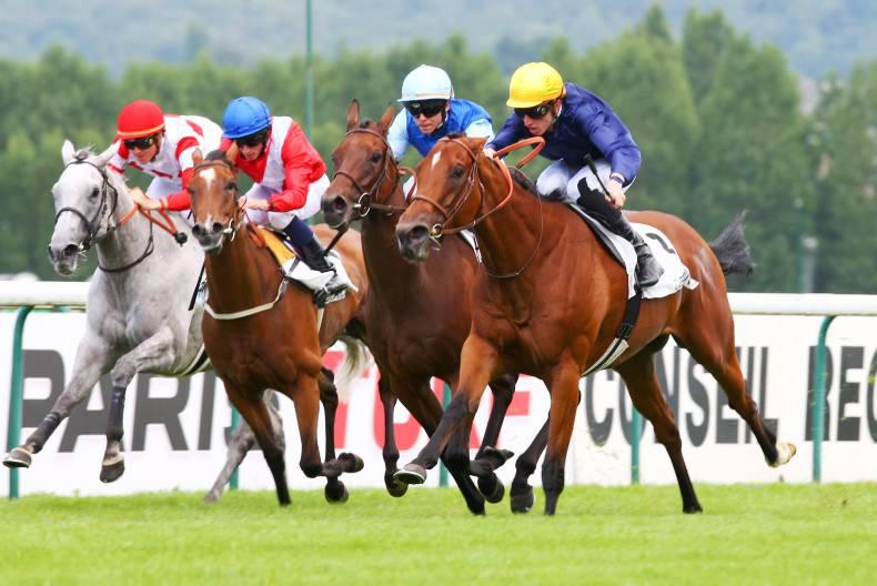 PEDIGREE NOTES: This week's pattern winners – 10th to 16th August