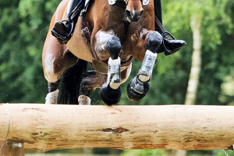 Ireland's eventers lose out on podium finish by fractions