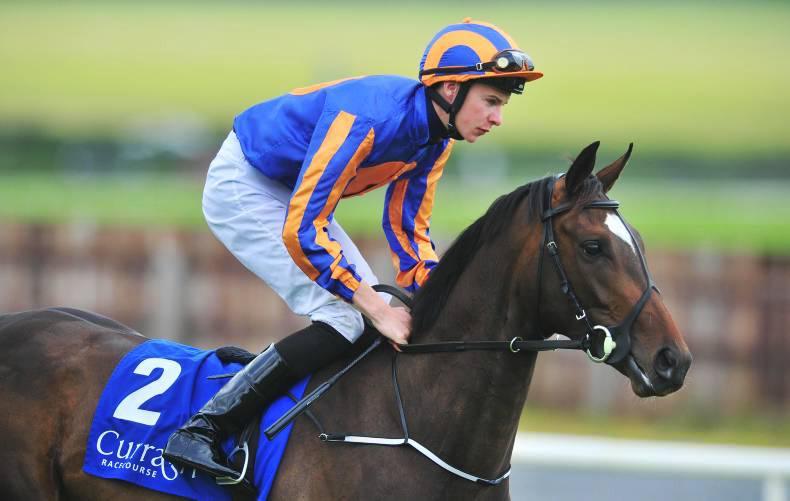 Ballydoyle and Sanus Per Aquam on course for Curragh