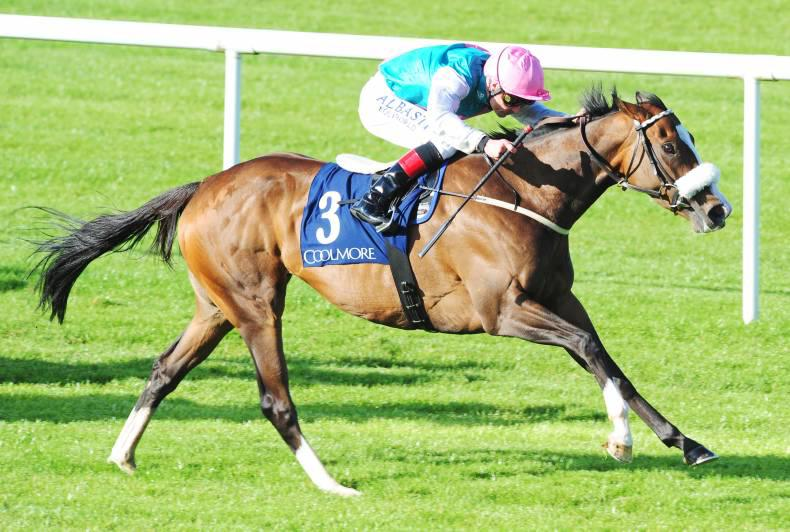 TIPPERARY THURSDAY: A treble for Rosewell House