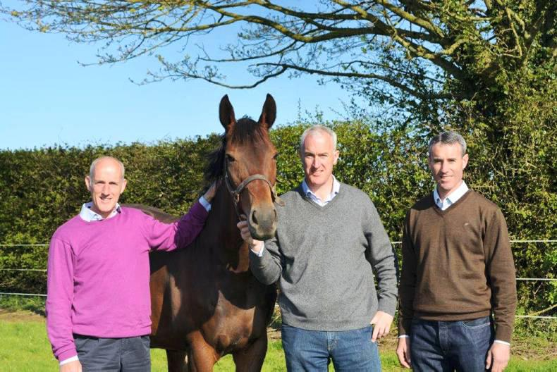 Dwan brothers launch bloodstock company