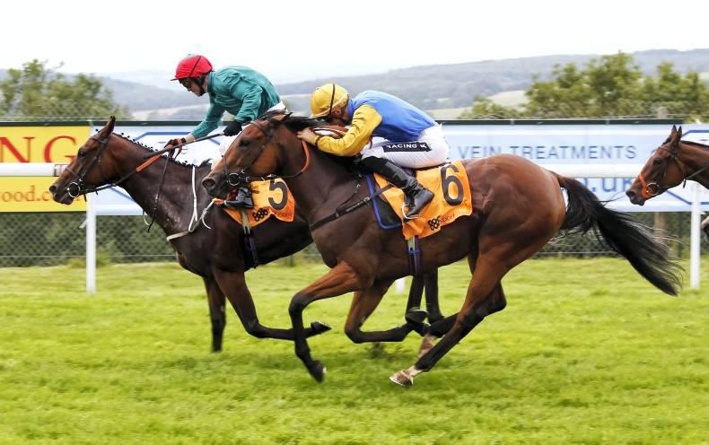Azamour filly Hawksmoor earns Prestige