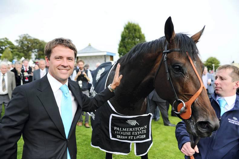 Brown Panther heads Irish St Leger charge