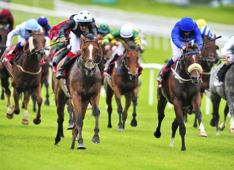 CURRAGH SUNDAY: Tint hints of more to come