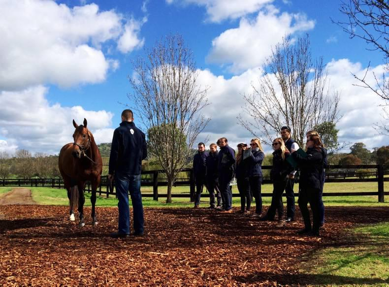 DARLEY FLYING START:  Expectations surpassed in the Hunter Valley
