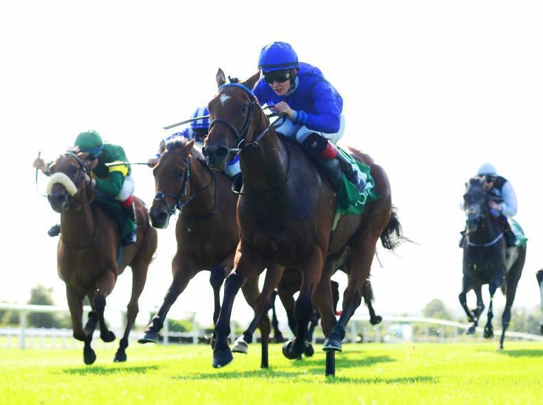 NAVAN SATURDAY: McCreery's season gallops on