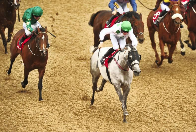 DUNDALK SUNDAY: Togoville wins again at favourite track