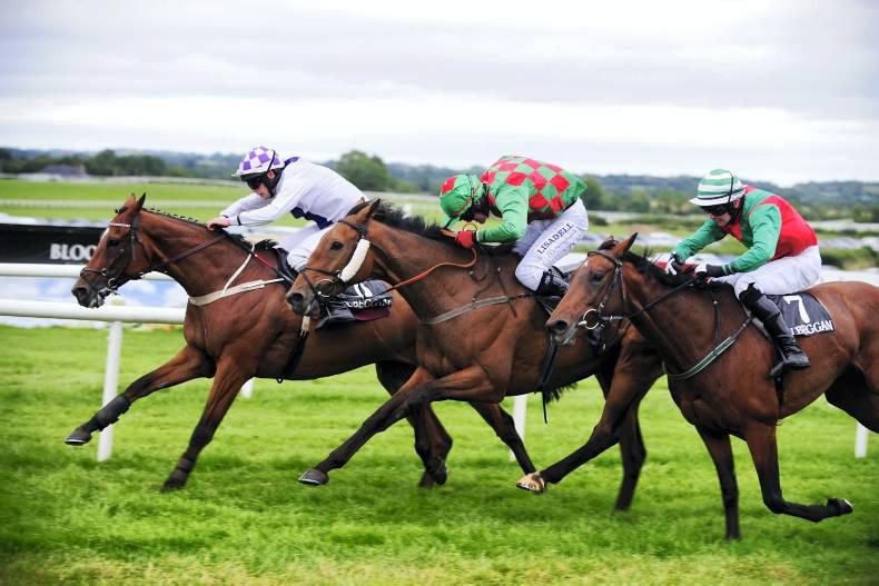 KILBEGGAN FRIDAY: Good day at the office for Dalton