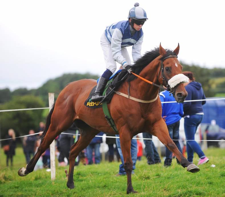 HORSE & PONY RACING: Another four winners for Ryan
