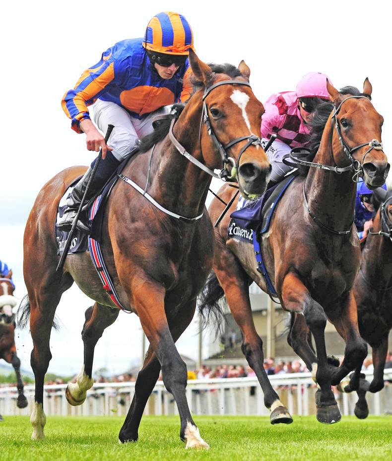 LEOPARDSTOWN: Gleneagles can speed to success