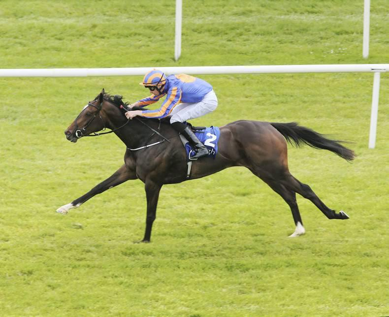 CURRAGH SUNDAY: Smart Ballydoyle should show the way