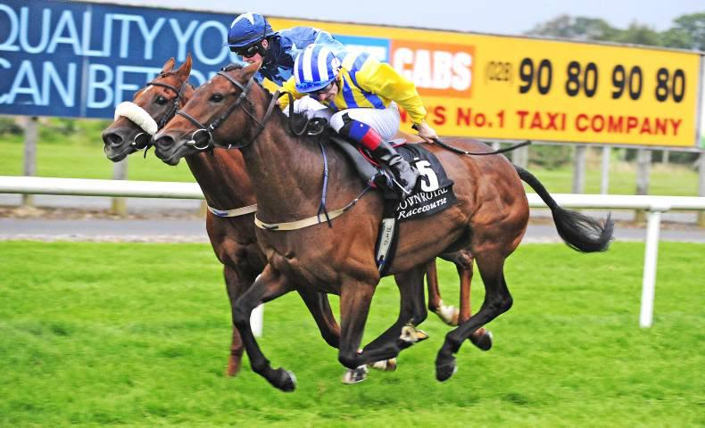 DOWN ROYAL: Deat-heat drama in Cesarewitch
