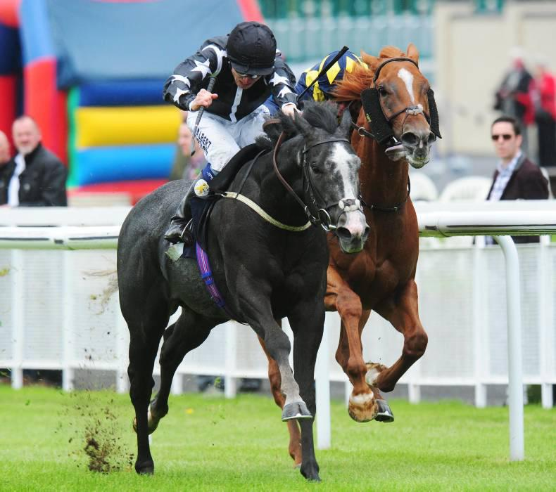 BRITISH PREVIEW: Toofi too tough for Gold Cup rivals