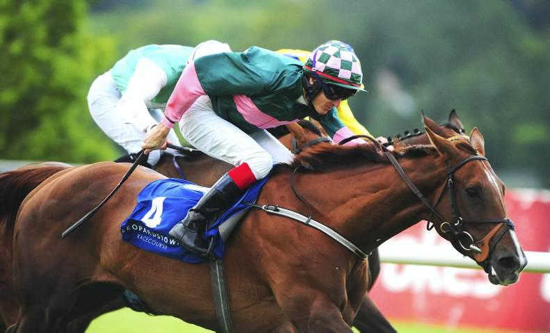 LADBROKES NAP TABLE: Selections for weekend September 19-20th