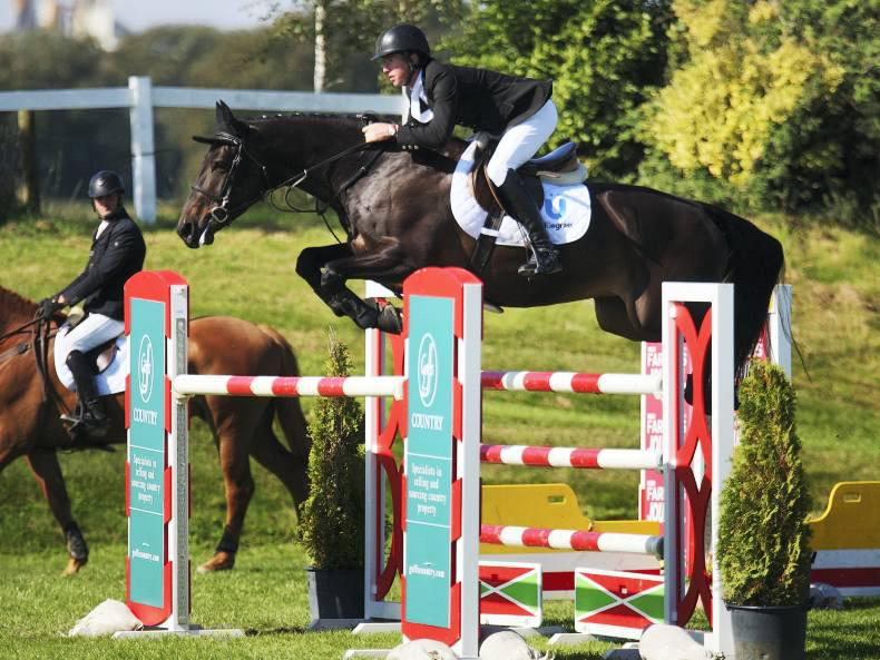 Silver and bronze medals for Irish-bred horses at world breeding championships
