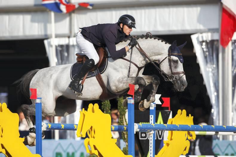 Seven Irish Sport Horses reach Lanaken finals