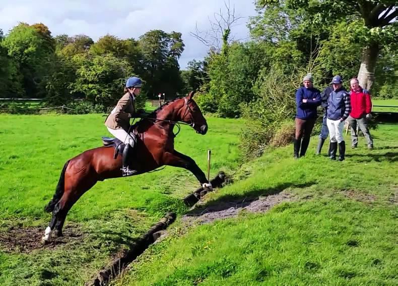 Hand-picked hunters set for Show & Go