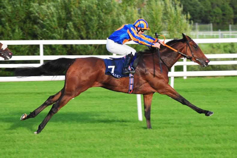TALKING TRAINERS: Plenty to look forward to
