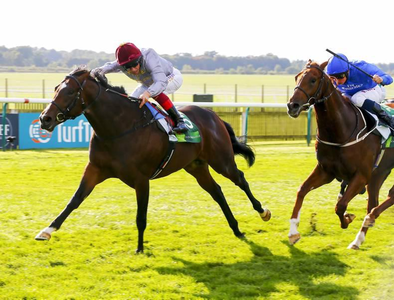 Second Group 1 for Spirit son Shalaa