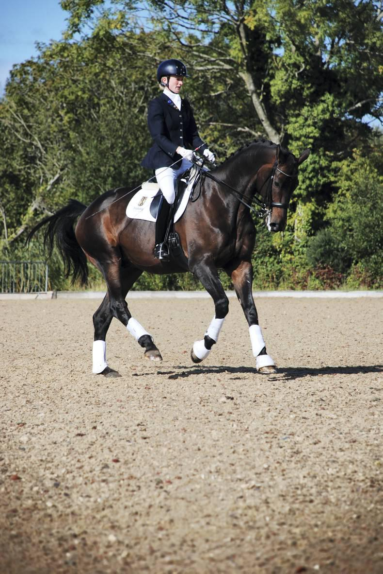 Competitive action at dressage championships