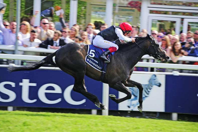 PEDIGREE NOTES: This week's pattern winners up to 4th October