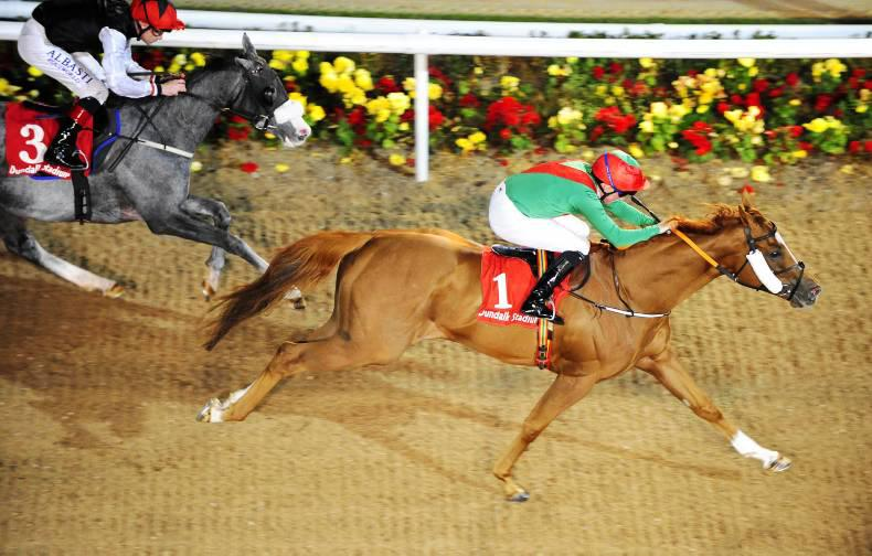 DUNDALK FRIDAY: Panama Hat gives all for Team Valor