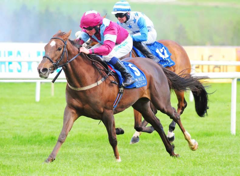 LIMERICK SATURDAY:  Giselle gets the vote from good draw