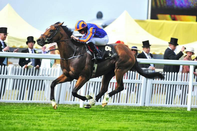 All set fair for Gleneagles date at Ascot