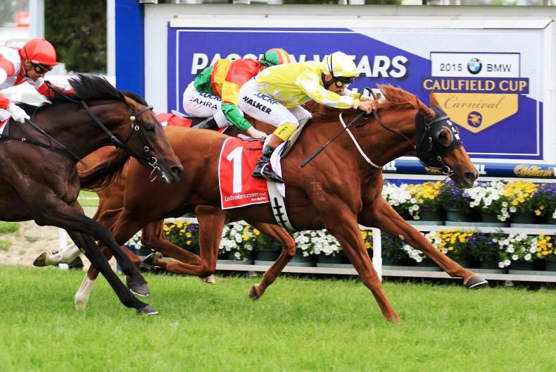 AUSTRALIA: Criterion stakes Cox claim