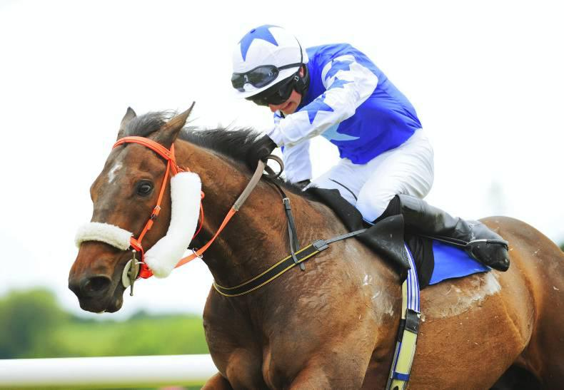 PONY RACING: O'Keeffe and Sheehy the double stars