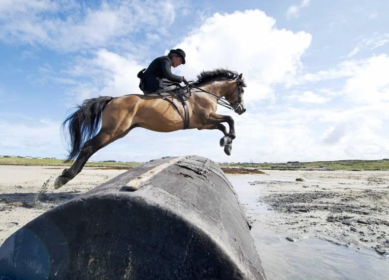 MARGIE MCLOONE: Side-saddle sponsorship sought