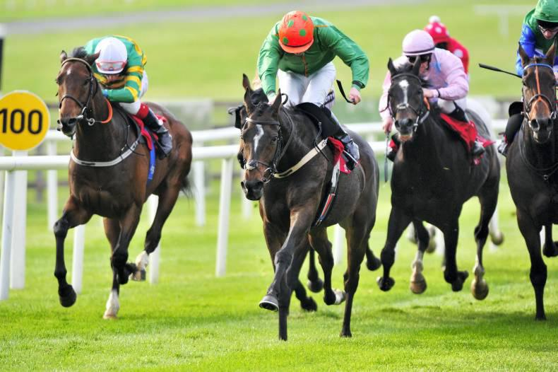CURRAGH SUNDAY: Digeanta digs deep for Lee