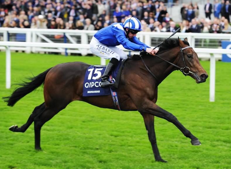 SIMON ROWLANDS: Muhaarar's time joint-best of the year