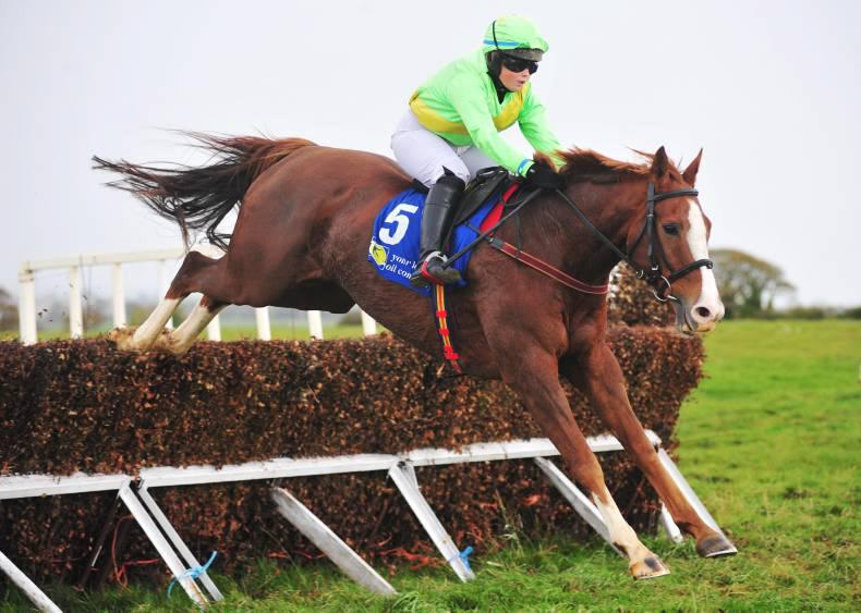 Stella set for pointing campaign