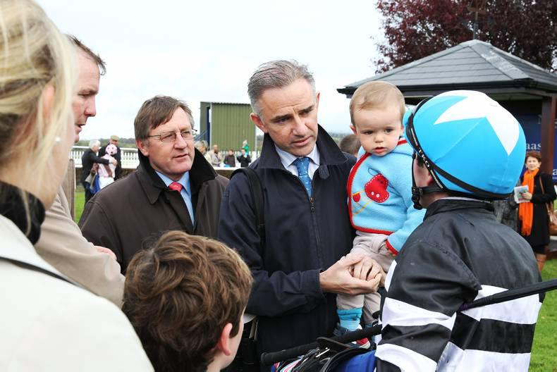PARROT MOUTH: James Kelly launches bloodstock investment venture