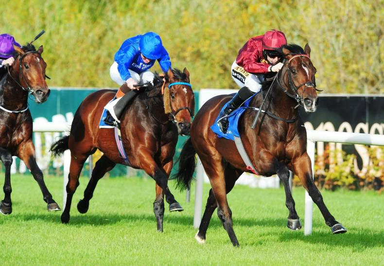 LEOPARDSTOWN SATURDAY:  Future looks bright for Blue