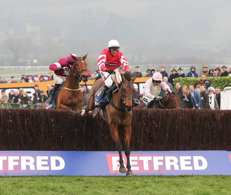 Coneygree could run at Leopardstown